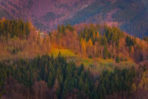 42-43 týden - Pohled přes údolí Malý Lipový